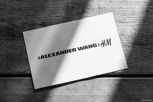 Eek! Alexander Wang Announces Collection with H&M